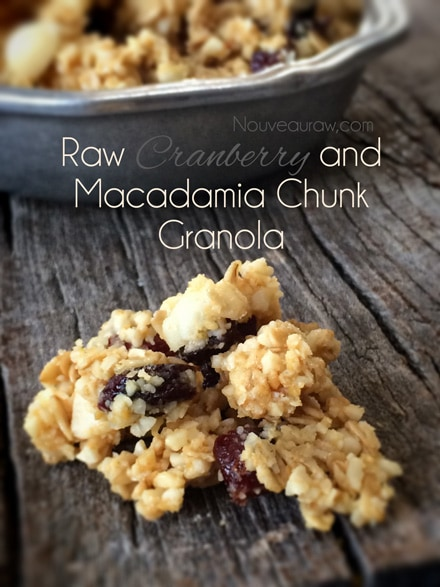 Raw-Cranberry-and-Macadamia-Chunk-Granola1