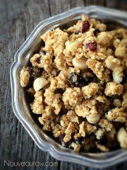Cranberry and Macadamia Chunky Granola (raw, vegan, gluten-free)