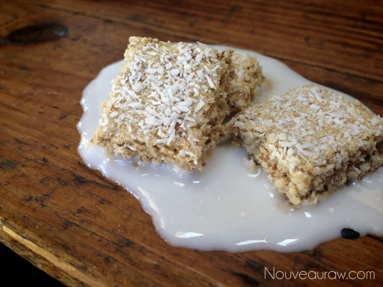 Raw-Shredded-Coconut-Biscuit-Cereal-57