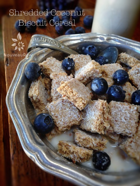 Shredded-Coconut-Biscuit-Cereal-featured