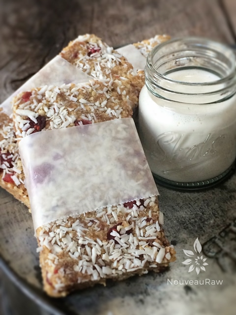Recipe for Cranberry Coconut Star Anise Bar that's raw, vegan, gluten-free, Paleo