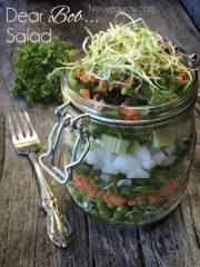 Dear Bob, Salad (raw, vegan, gluten-free, nut-free)