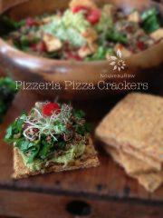 Pizzeria Pizza Crackers  (raw, vegan, gluten-free)