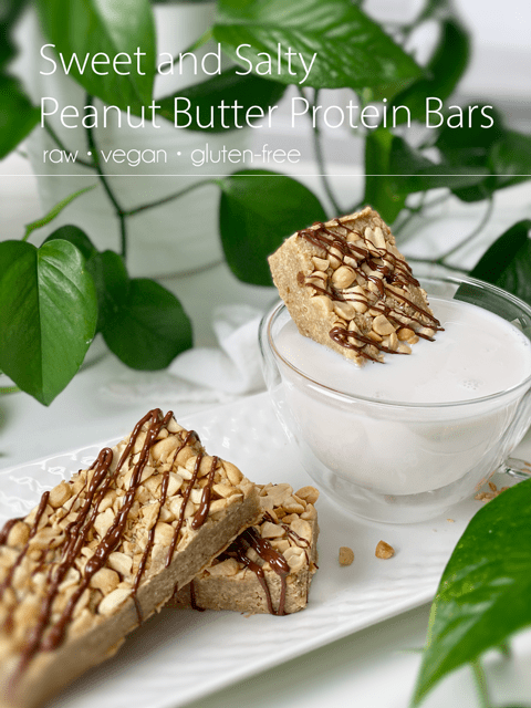 raw vegan gluten-free sweet and salty peanut butter protein bars
