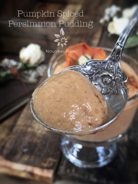 Pumpkin-Spiced-Persimmon-Pudding-spoonfull