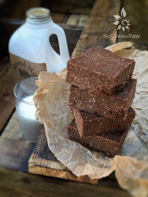 raw bar stacked with a jug of almond milk - Raw, Gluten-Free, Nut-Free Chocolate Honey Oatmeal Date Bars