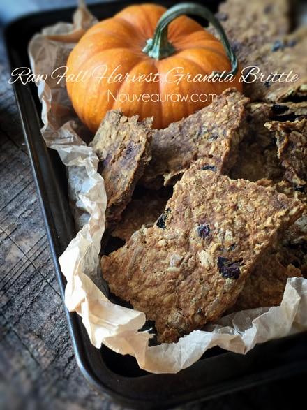 raw vegan Fall Harvest Granola Brittle broken in chunks