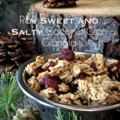 Raw-Sweet-and-Salty-Coconut-Cran-Granola1