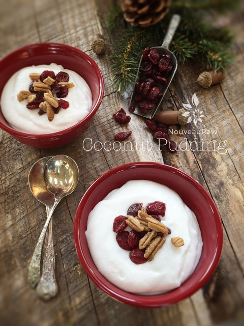 raw, vegan, gluten-free, and nut-free Coconut Pudding