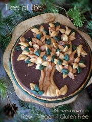 Tree of Life Raw Cake (raw, vegan, gluten-free)