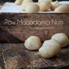 raw-macadamia-nuts1