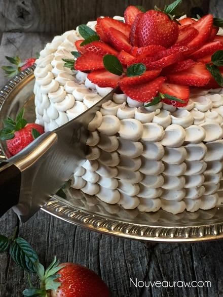 Gluten-free, Raw, Vegan Red Velvet Cake
