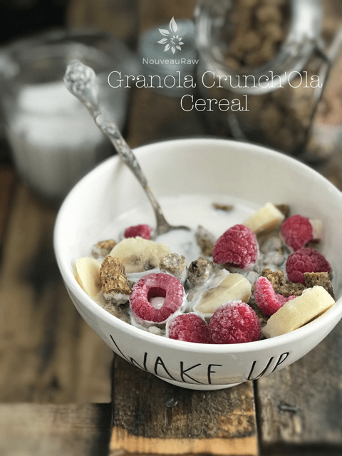 raw vegan Granola-Crunch'Ola-Cereal in a Rae Dunn bowl