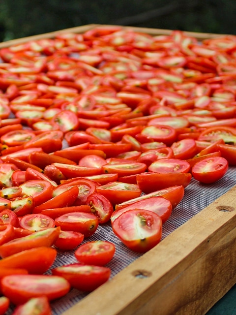 sun-drying-food-F