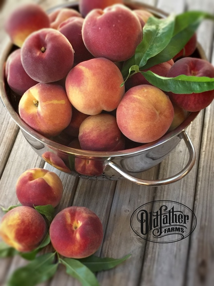 a display of yummy and refreshing peaches in a bowl