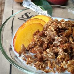 Soft-n'-chewy-pecan-peach-granola2