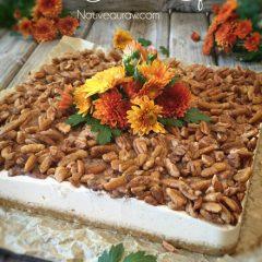 Pecan-Cheesecake-Squares2