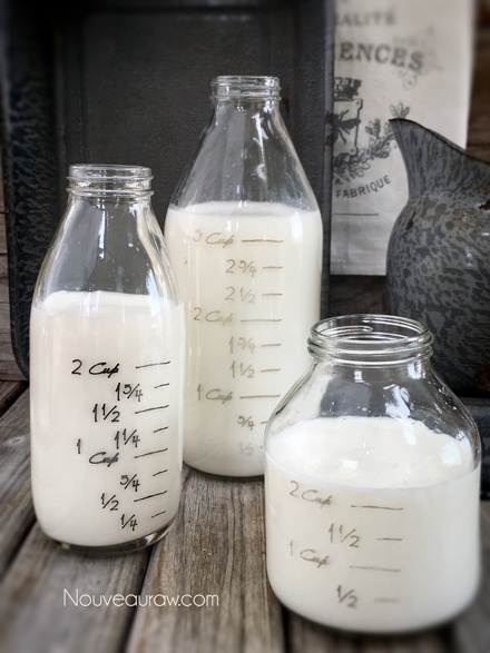 Raw Coconut Milk and Cream in Glass Jars