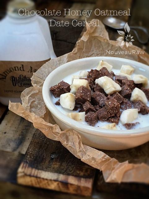 Raw, Vegan, Gluten Free Chocolate Honey Oatmeal Date Cereal