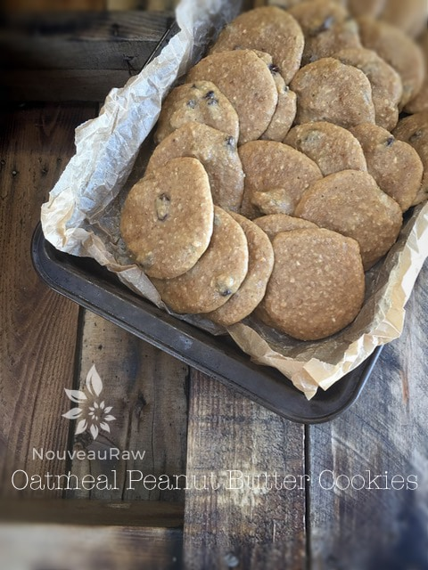 Oatmeal Peanut Butter Cookies - Raw, vegan, gluten free