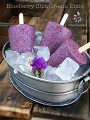 Blueberry Chia Cream Dixie Pops (raw, vegan, gluten-free)