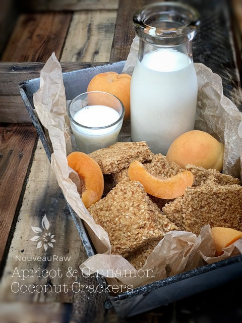 vegan nut-free raw gluten-free crackers, apricot and cinnamon coconut crackers
