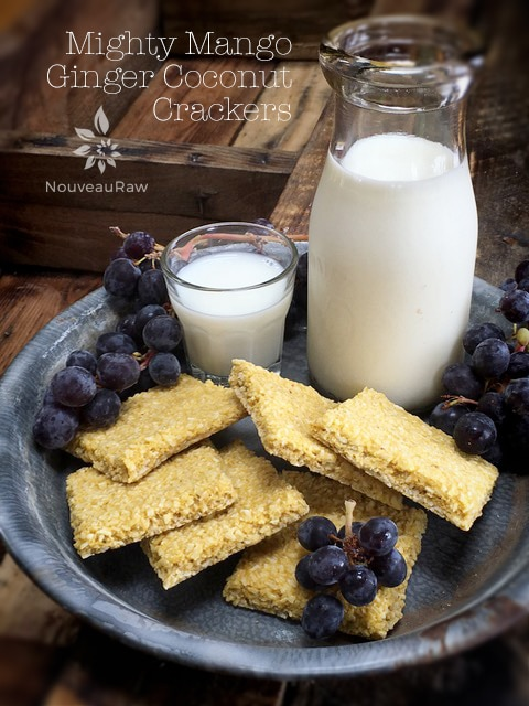 raw, vegan, nut-free, gluten-free crackers. Mighty mango ginger coconut crackers