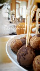 """Aged"" Cranberry Pumpkin Spiced Meltaways (raw, vegan, gluten-free)"