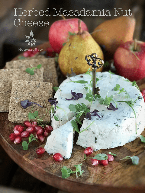 Herbed-Macadamia-Nut-Cheese served with fresh fruit