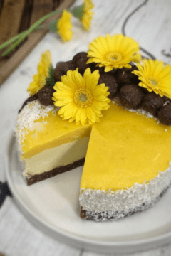 raw and vegan recipe for Tropical Mango Cheesecake