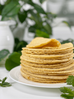 vegan oil-free organic corn tortillas