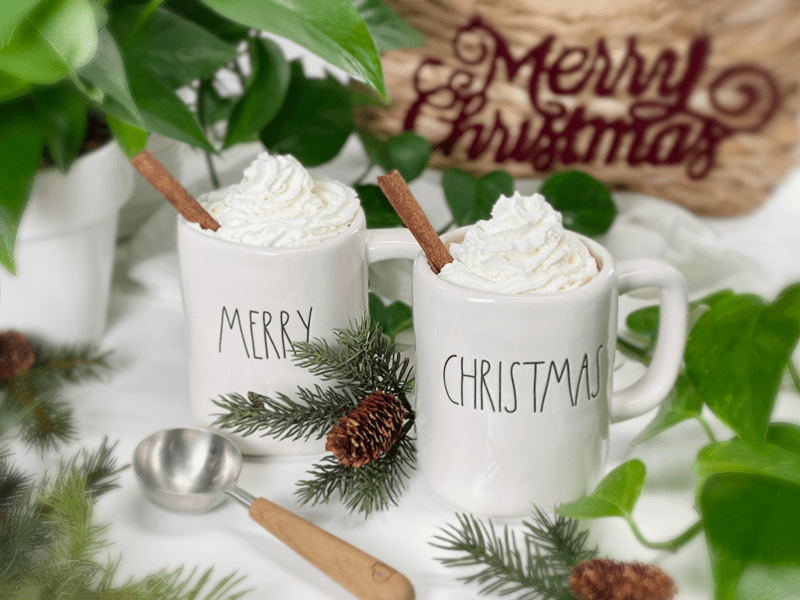 vegan preservative free hottie hot chocolate