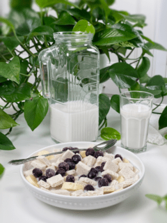 raw vegan gluten-free coconut Crunch cereal